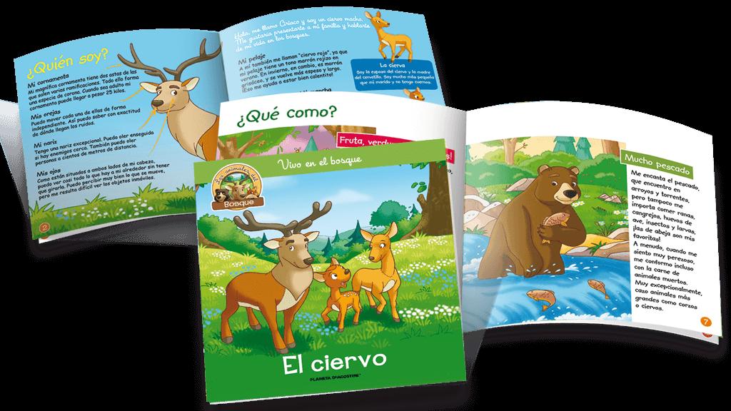 ¡Descubre el mundo de los animales del bosque y juega con ellos!